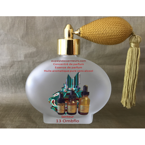 Concentré de parfum essence de parfum huile aromatique 13 Ombflo